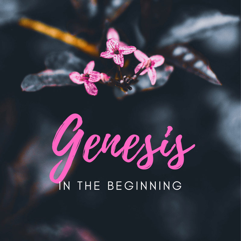 Sermons from Genesis, first book of the Bible. Discusses our origins and design by God. Delivered at Wentworthville Presbyterian Church May-June 2019